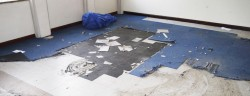 Midlands Asbestos Solutions Floor Tiles
