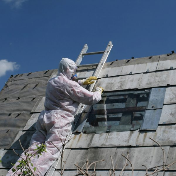 Everything You Need to Know about Testing for Asbestos